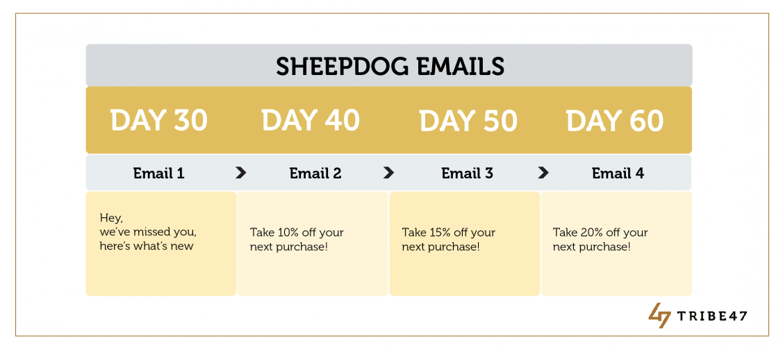 Sheepdog Email Campaign Ecommerce