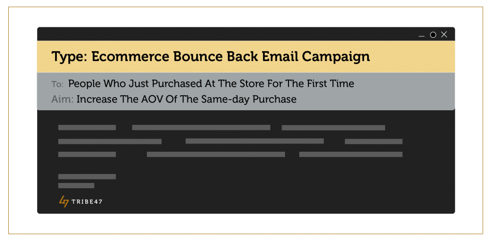 Ecommerce Bounce Back Email