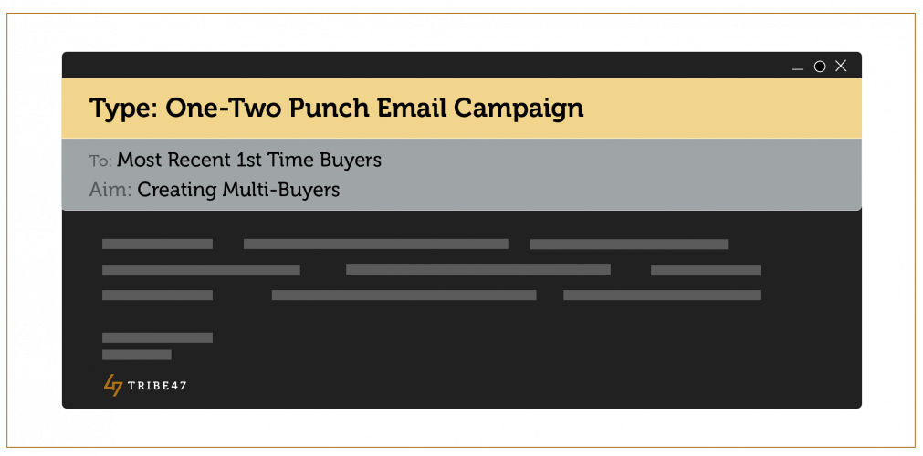 One-two punch email campaign - Ecommerce